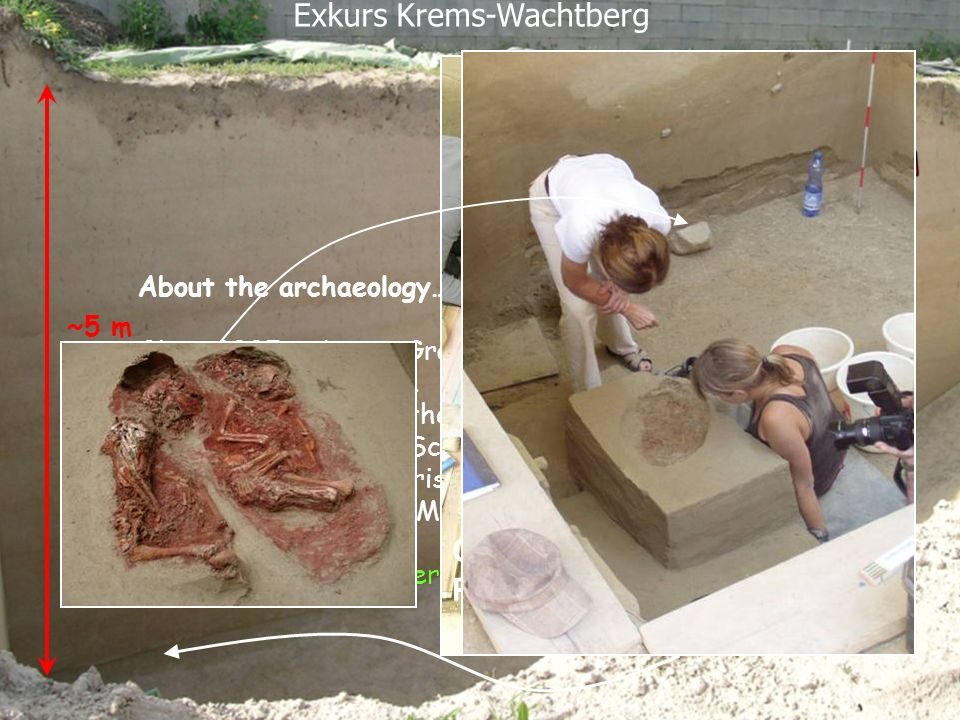 ~5 m About the archaeology……. Since 2005 an Lower Gravettian cultural layer is excavated at this site. The project is led by the Praehistoric Commissi