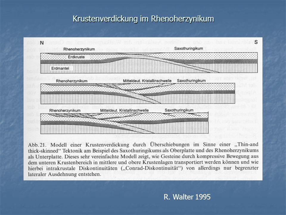 Krustenverdickung im Rhenoherzynikum R. Walter 1995