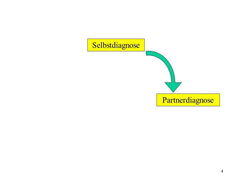 4 Selbstdiagnose Partnerdiagnose