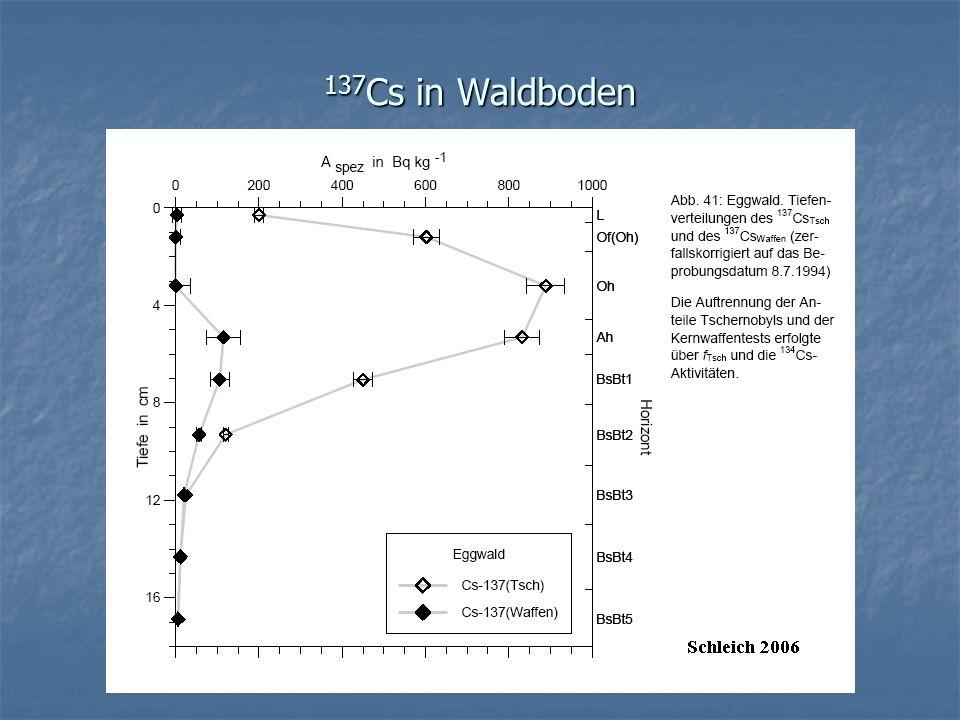 137 Cs in Waldboden