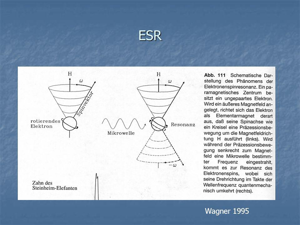 ESR Wagner 1995