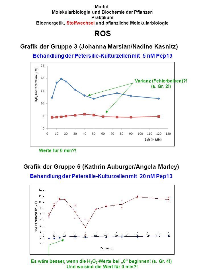 Grafik der Gruppe 3 (Johanna Marsian/Nadine Kasnitz) Behandlung der Petersilie-Kulturzellen mit 5 nM Pep13 Modul Molekularbiologie und Biochemie der Pflanzen Praktikum Bioenergetik, Stoffwechsel und pflanzliche Molekularbiologie Varianz (Fehlerbalken) .