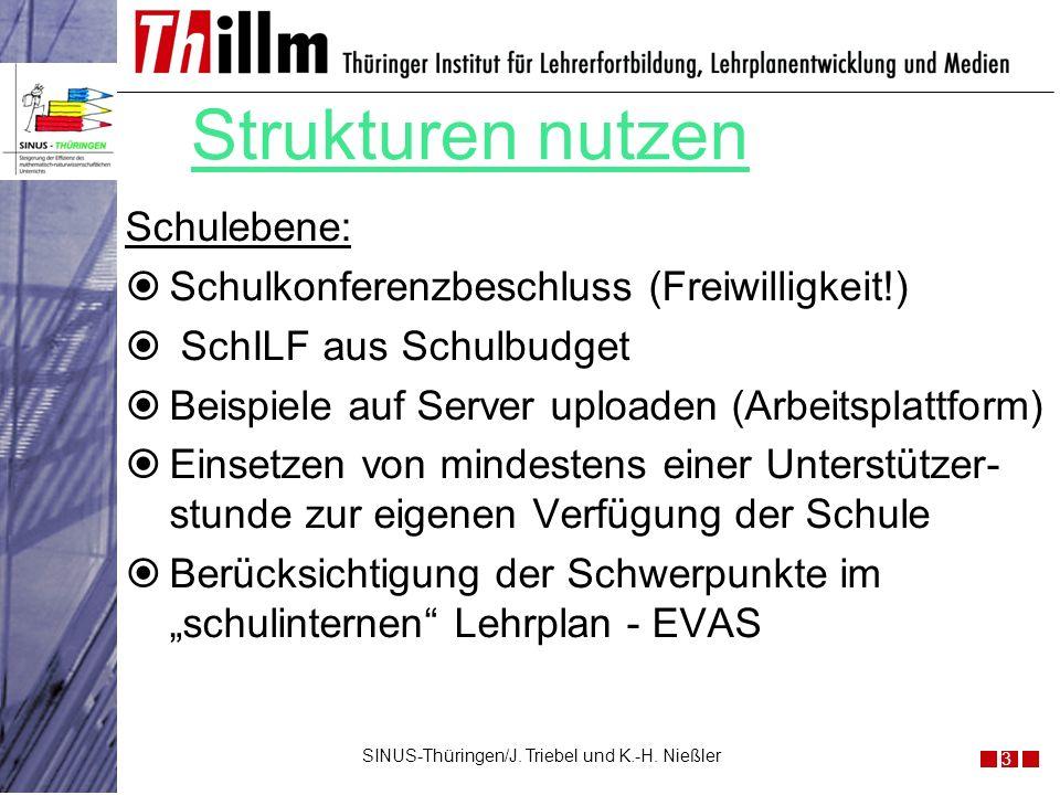 Strukturen nutzen Schulebene: Schulkonferenzbeschluss (Freiwilligkeit!) SchILF aus Schulbudget Beispiele auf Server uploaden (Arbeitsplattform) Einset