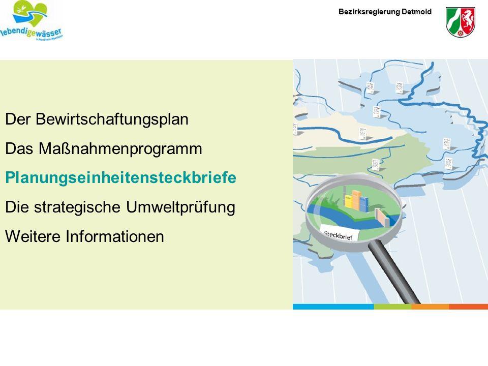 Bezirksregierung Detmold Der Bewirtschaftungsplan Das Maßnahmenprogramm Planungseinheitensteckbriefe Die strategische Umweltprüfung Weitere Informatio