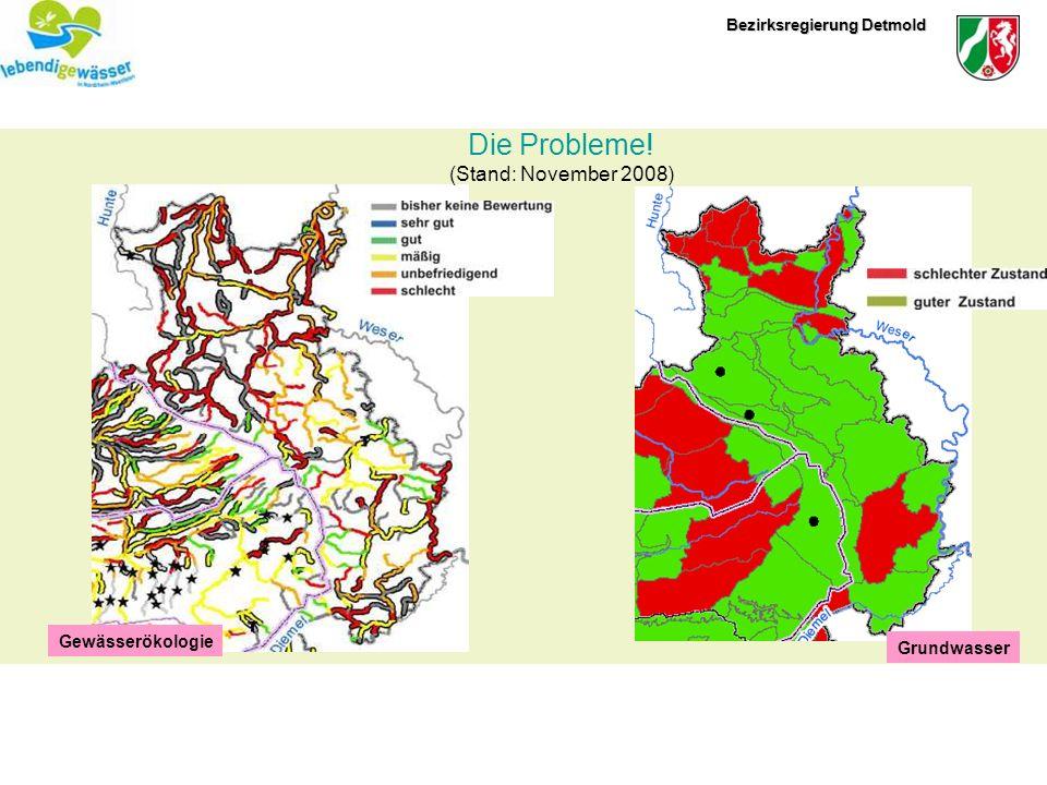 Grundwasser Gewässerökologie Die Probleme! (Stand: November 2008)