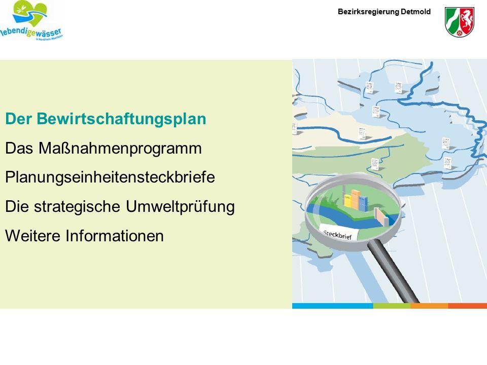 Bezirksregierung Detmold Der Bewirtschaftungsplan (Artikel 13 WRRL) Die Mitgliedsstaaten sorgen dafür, dass für jede Flussgebietseinheit ein Bewirtschaftungsplan aufgestellt wird.
