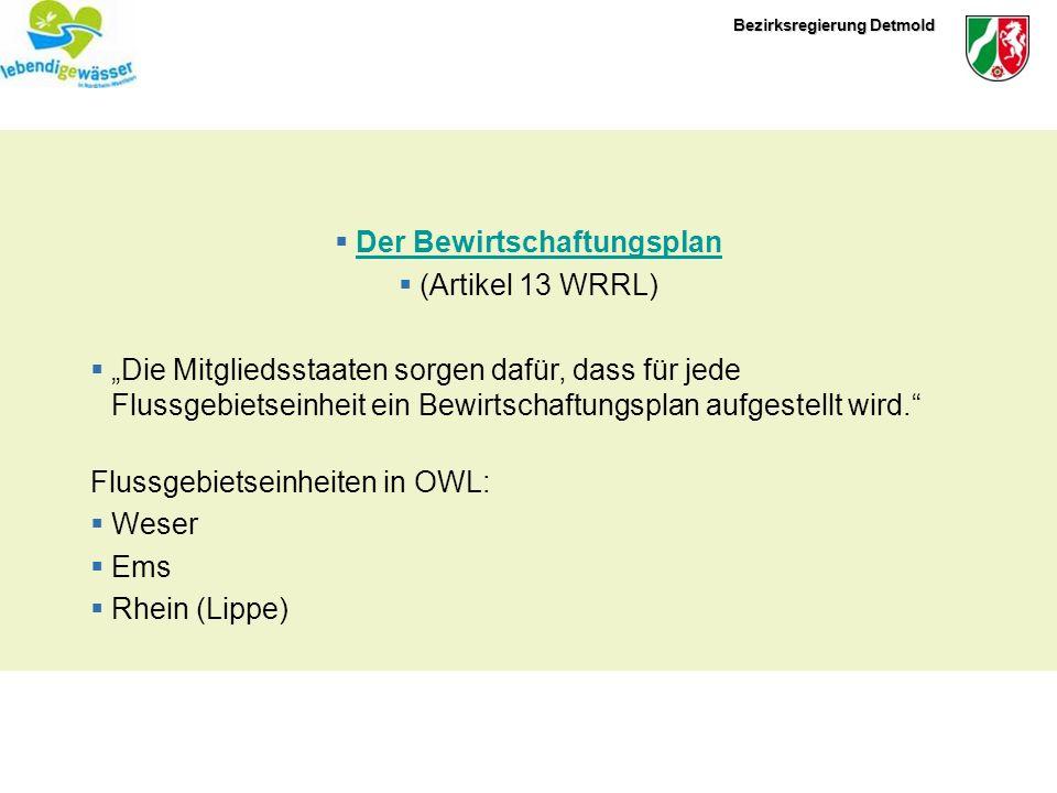 Bezirksregierung Detmold Ebenen der Bewirtschaftungspläne A-Ebene – Flußgebietseinheit (Gesamte Weser, Ems-International,……) Weser: Flussgebiesgemeinschaft Weser in Hildesheim B-Ebene – Teileinzugsgebiete (Die Ems in Deutschland)