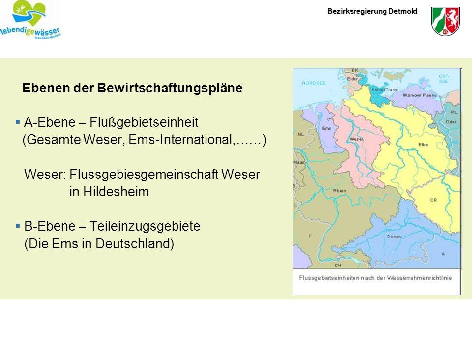 Bezirksregierung Detmold Ebenen der Bewirtschaftungspläne A-Ebene – Flußgebietseinheit (Gesamte Weser, Ems-International,……) Weser: Flussgebiesgemeins