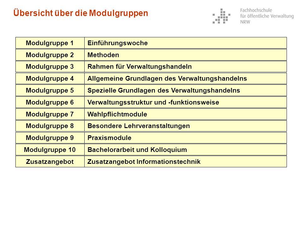 Übersicht über die Modulgruppen Modulgruppe 1Einführungswoche Modulgruppe 2Methoden Modulgruppe 3Rahmen für Verwaltungshandeln Modulgruppe 4Allgemeine