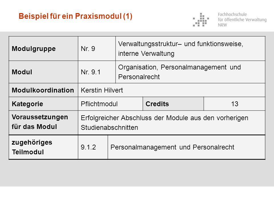Beispiel für ein Praxismodul (1) ModulgruppeNr. 9 Verwaltungsstruktur– und funktionsweise, interne Verwaltung ModulNr. 9.1 Organisation, Personalmanag