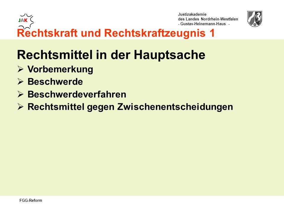 Justizakademie des Landes Nordrhein-Westfalen - Gustav-Heinemann-Haus - FGG-Reform Rechtskraft und Rechtskraftzeugnis 1 Rechtsmittel in der Hauptsache Vorbemerkung Beschwerde Beschwerdeverfahren Rechtsmittel gegen Zwischenentscheidungen