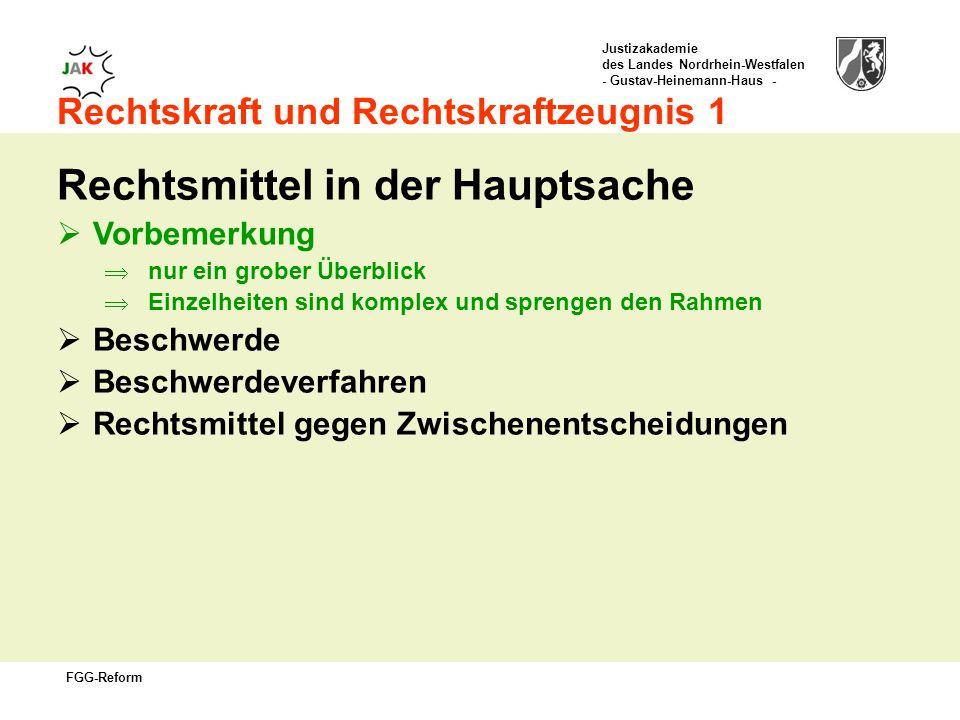 Justizakademie des Landes Nordrhein-Westfalen - Gustav-Heinemann-Haus - FGG-Reform Rechtskraft und Rechtskraftzeugnis 1 Rechtsmittel in der Hauptsache Vorbemerkung nur ein grober Überblick Einzelheiten sind komplex und sprengen den Rahmen Beschwerde Beschwerdeverfahren Rechtsmittel gegen Zwischenentscheidungen
