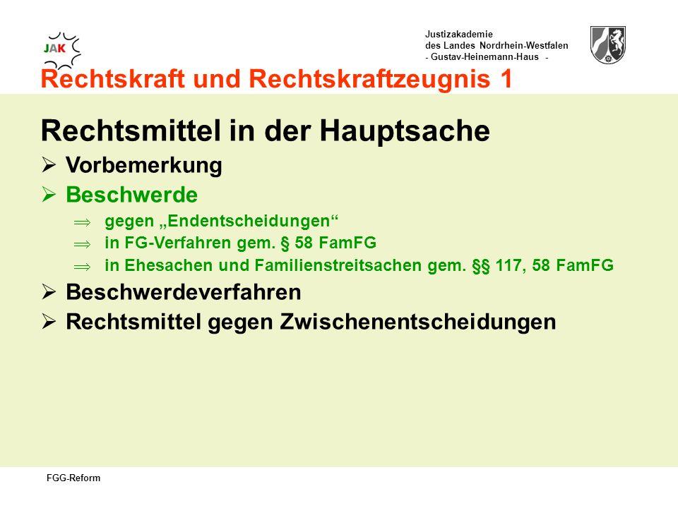 Justizakademie des Landes Nordrhein-Westfalen - Gustav-Heinemann-Haus - FGG-Reform Rechtskraft und Rechtskraftzeugnis 1 Rechtsmittel in der Hauptsache Vorbemerkung Beschwerde gegen Endentscheidungen in FG-Verfahren gem.