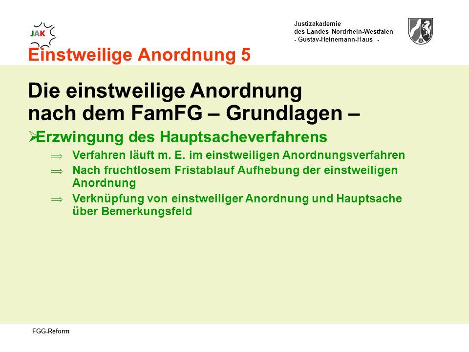 Justizakademie des Landes Nordrhein-Westfalen - Gustav-Heinemann-Haus - FGG-Reform Einstweilige Anordnung 5 Die einstweilige Anordnung nach dem FamFG – Grundlagen – Erzwingung des Hauptsacheverfahrens Verfahren läuft m.