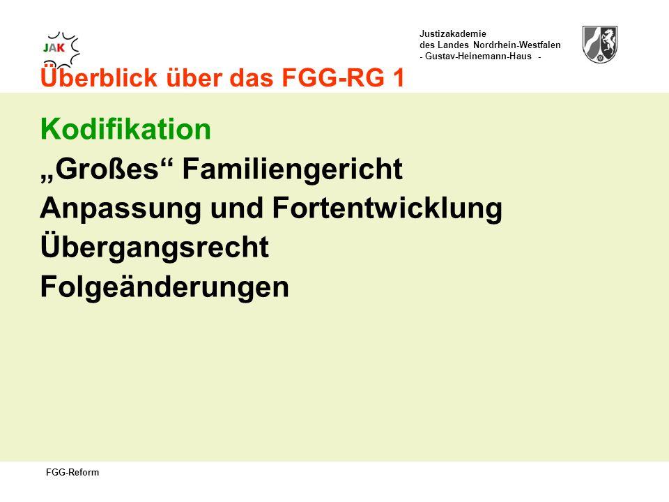 Justizakademie des Landes Nordrhein-Westfalen - Gustav-Heinemann-Haus - FGG-Reform Überblick über das FGG-RG 1 Kodifikation Großes Familiengericht Anpassung und Fortentwicklung Übergangsrecht Folgeänderungen