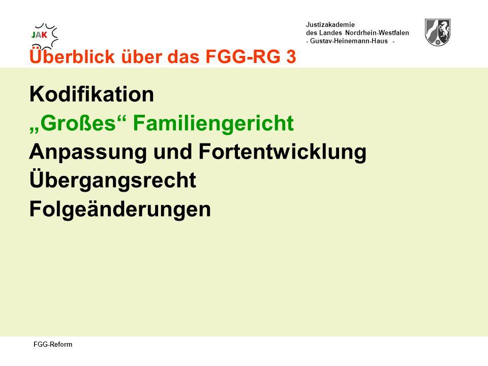 Justizakademie des Landes Nordrhein-Westfalen - Gustav-Heinemann-Haus - FGG-Reform Überblick über das FGG-RG 3 Kodifikation Großes Familiengericht Anpassung und Fortentwicklung Übergangsrecht Folgeänderungen