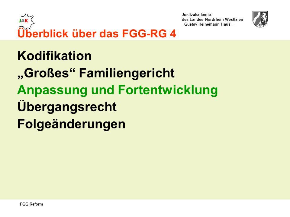 Justizakademie des Landes Nordrhein-Westfalen - Gustav-Heinemann-Haus - FGG-Reform Überblick über das FGG-RG 4 Kodifikation Großes Familiengericht Anpassung und Fortentwicklung Übergangsrecht Folgeänderungen