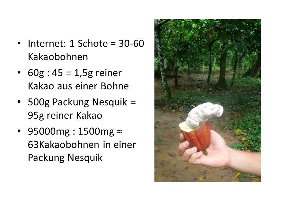 Internet: 1 Schote = 30-60 Kakaobohnen 60g : 45 = 1,5g reiner Kakao aus einer Bohne 500g Packung Nesquik = 95g reiner Kakao 95000mg : 1500mg 63Kakaobo