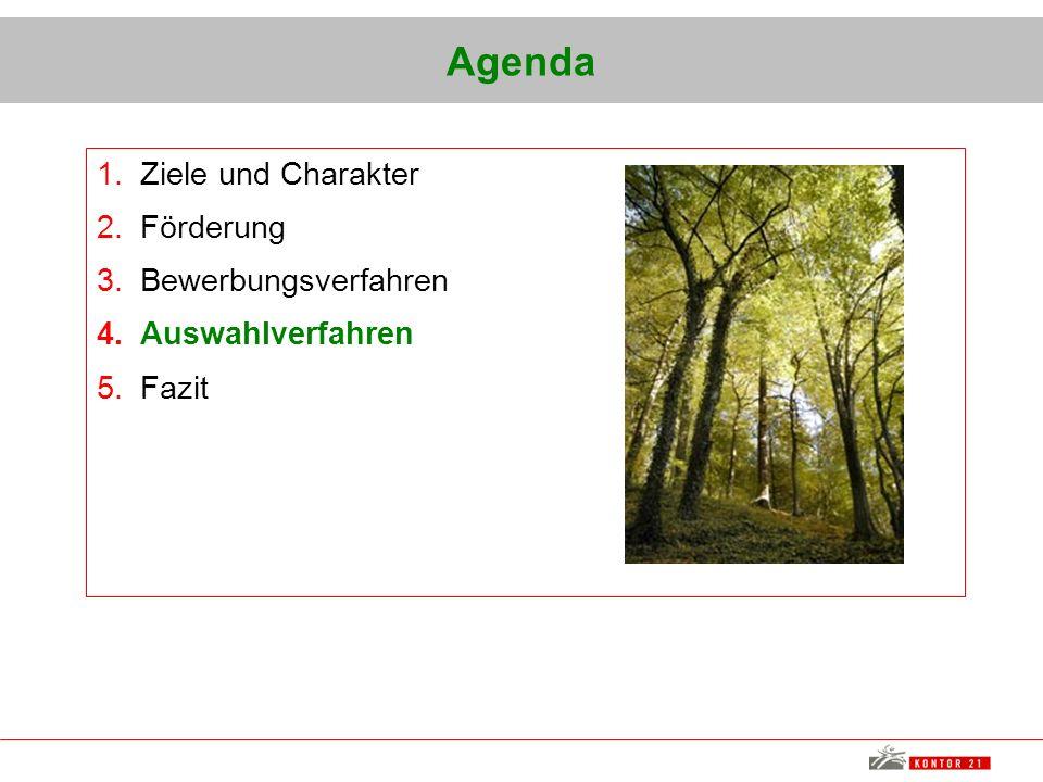 Agenda 1.Ziele und Charakter 2.Förderung 3.Bewerbungsverfahren 4.Auswahlverfahren 5.Fazit