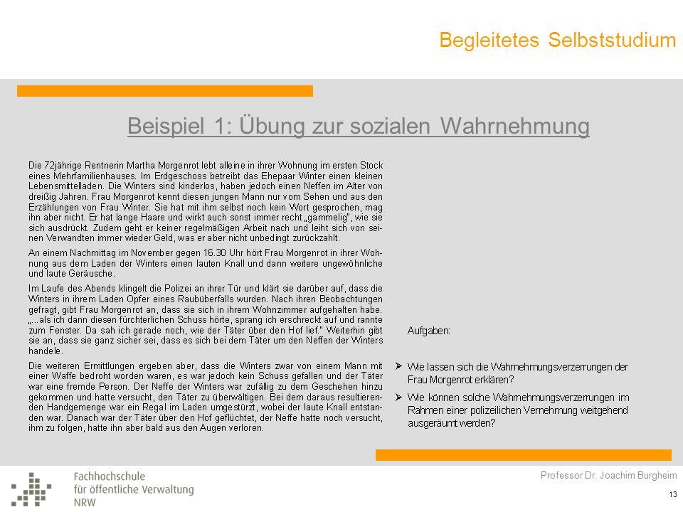 Begleitetes Selbststudium Professor Dr. Joachim Burgheim 13 Beispiel 1: Übung zur sozialen Wahrnehmung