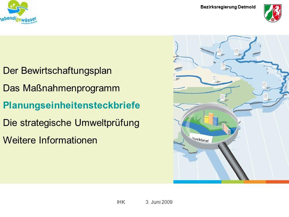 Bezirksregierung Detmold IHK3. Juni 2009 Der Bewirtschaftungsplan Das Maßnahmenprogramm Planungseinheitensteckbriefe Die strategische Umweltprüfung We
