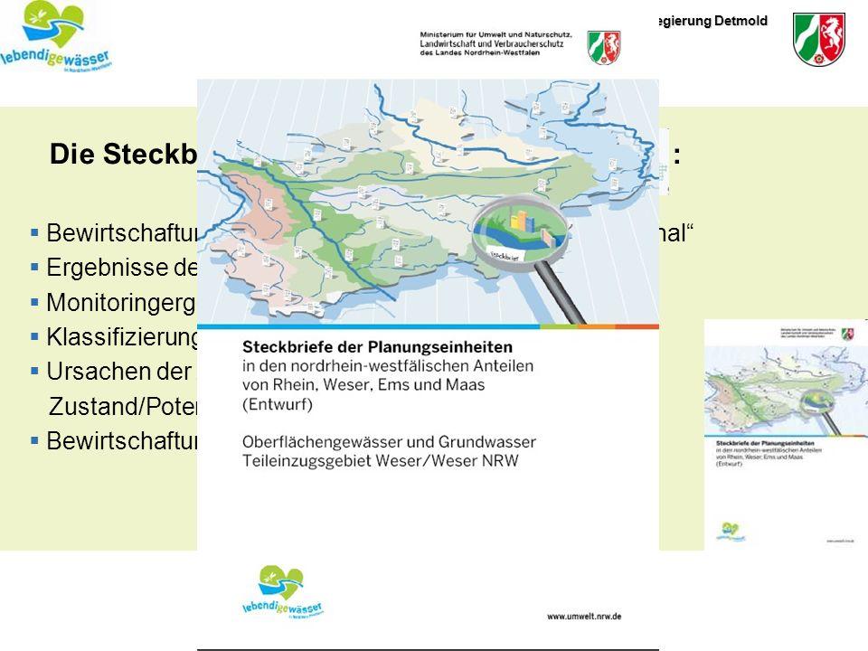 Bezirksregierung Detmold IHK3. Juni 2009 Die Steckbriefe der Planungseinheiten : Bewirtschaftungsplan und Maßnahmenprogramm Regional Ergebnisse der Ru