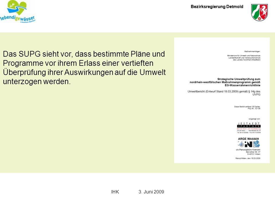 Bezirksregierung Detmold IHK3. Juni 2009 Das SUPG sieht vor, dass bestimmte Pläne und Programme vor ihrem Erlass einer vertieften Überprüfung ihrer Au