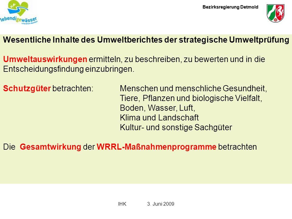 Bezirksregierung Detmold IHK3. Juni 2009 Wesentliche Inhalte des Umweltberichtes der strategische Umweltprüfung Umweltauswirkungen ermitteln, zu besch