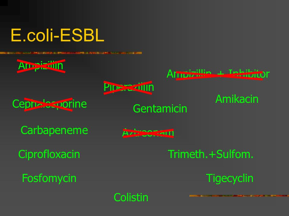 E.coli-ESBL Ampizillin Cephalosporine Carbapeneme Piperazillin Amikacin Gentamicin Trimeth.+Sulfom. Tigecyclin Ampizillin + Inhibitor Ciprofloxacin Az