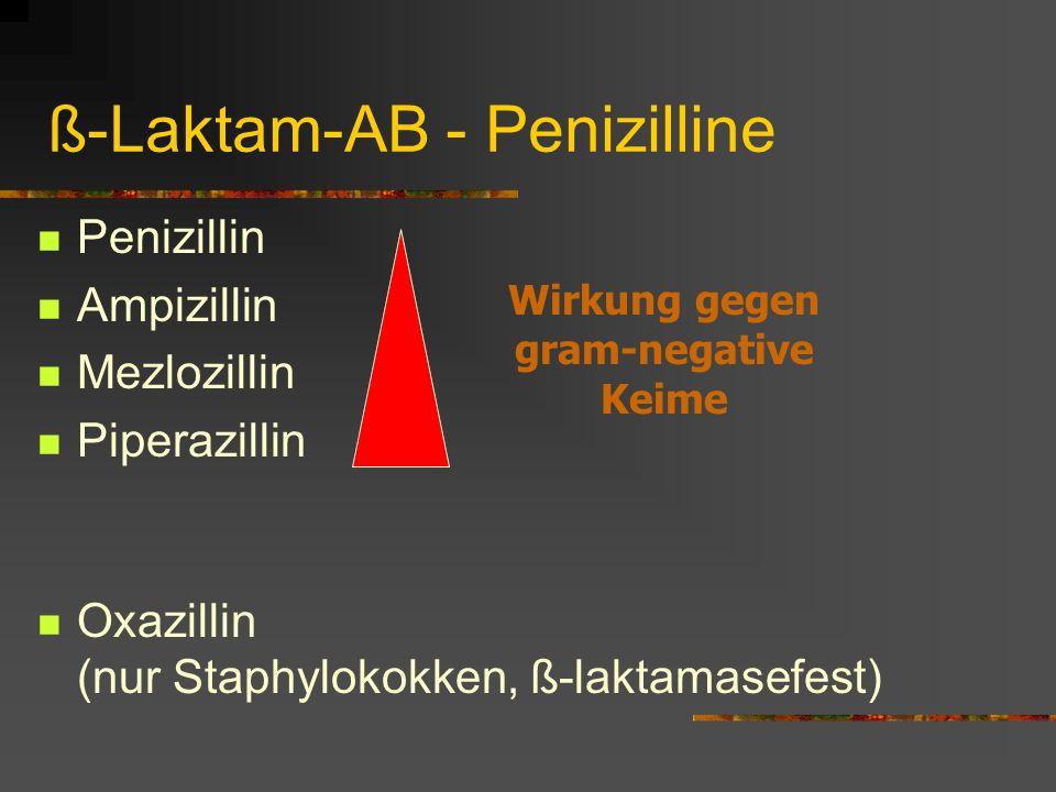 ß-Laktam-AB - Penizilline Penizillin Ampizillin Mezlozillin Piperazillin Oxazillin (nur Staphylokokken, ß-laktamasefest) Wirkung gegen gram-negative K