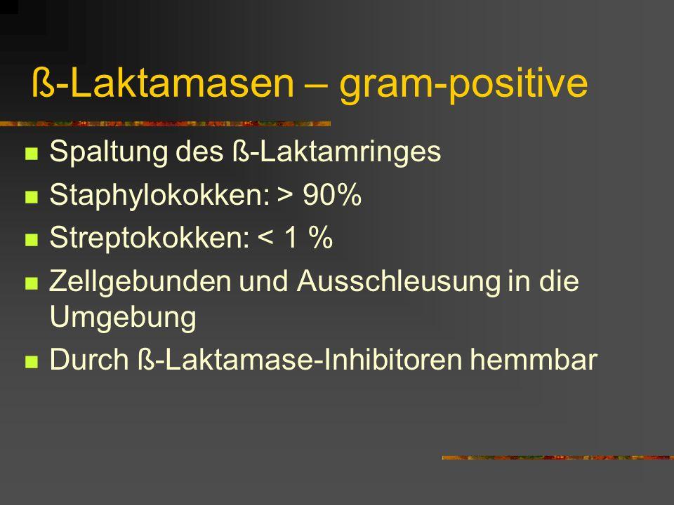 ß-Laktamasen – gram-positive Spaltung des ß-Laktamringes Staphylokokken: > 90% Streptokokken: < 1 % Zellgebunden und Ausschleusung in die Umgebung Dur