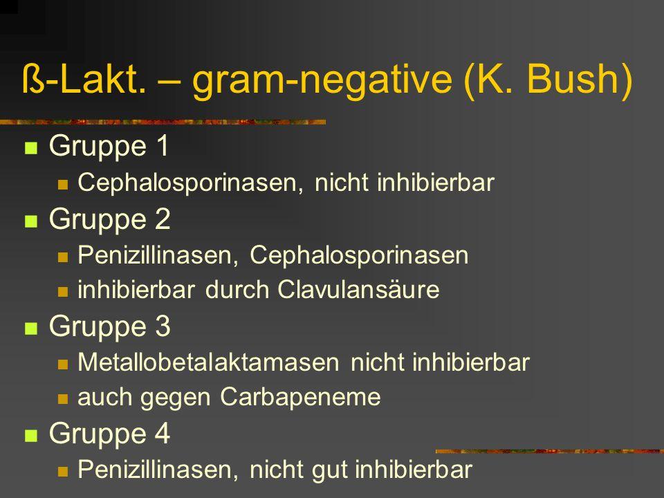 ß-Lakt. – gram-negative (K. Bush) Gruppe 1 Cephalosporinasen, nicht inhibierbar Gruppe 2 Penizillinasen, Cephalosporinasen inhibierbar durch Clavulans