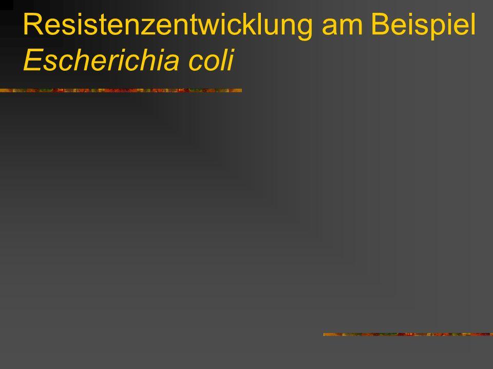 Resistenzentwicklung am Beispiel Escherichia coli