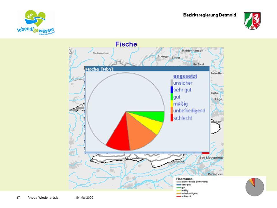 Bezirksregierung Detmold Rheda-Wiedenbrück1719. Mai 2009 Fische