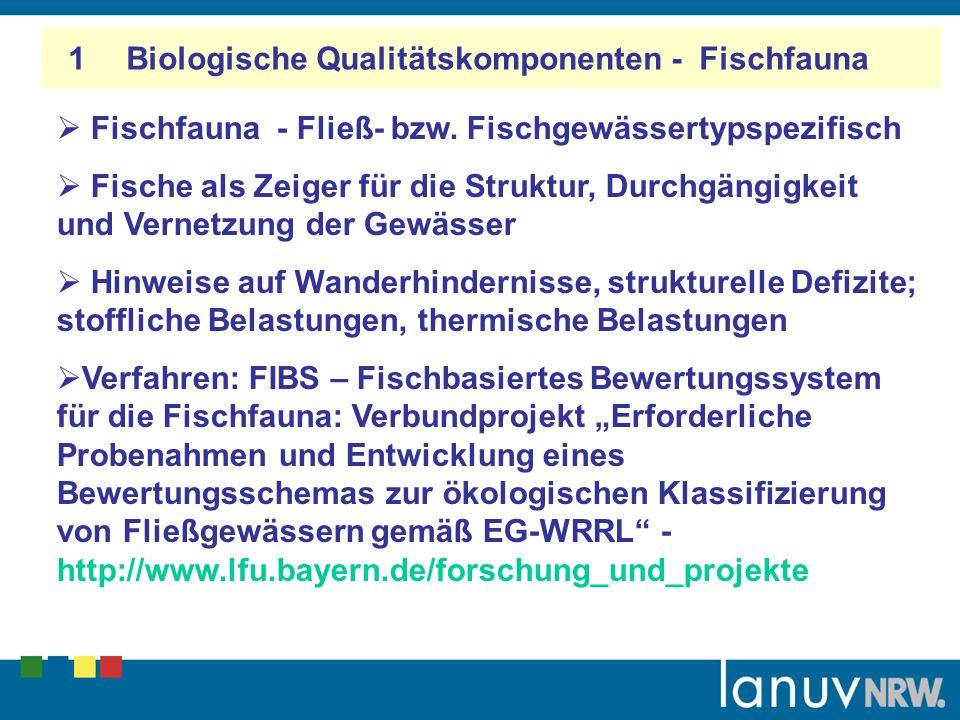 1 Biologische Qualitätskomponenten - Bewertung Die allgemeinen chemischen und physikalischen Parameter (ACP)– wie z.