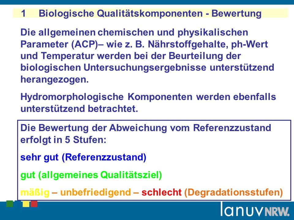 1 Biologische Qualitätskomponenten: Bewertung - Zustand des Oberflächenwasserkörpers