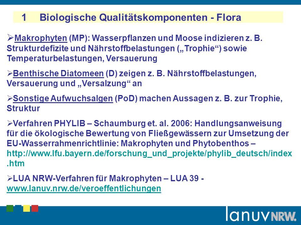 1 Biologische Qualitätskomponenten - Flora Makrophyten (MP): Wasserpflanzen und Moose indizieren z.