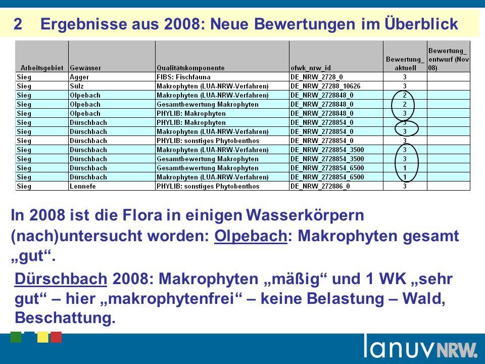 2 Ergebnisse aus 2008: Neue Bewertungen im Überblick In 2008 ist die Flora in einigen Wasserkörpern (nach)untersucht worden: Olpebach: Makrophyten gesamt gut.