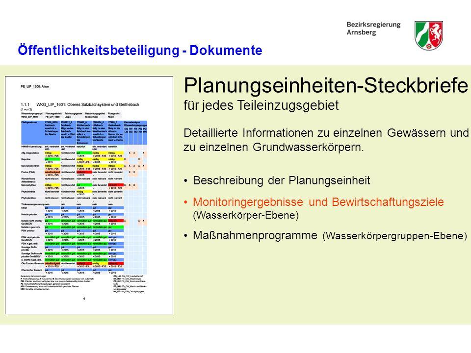 Öffentlichkeitsbeteiligung - Dokumente Beschreibung der Planungseinheit Monitoringergebnisse und Bewirtschaftungsziele (Wasserkörper-Ebene) Maßnahmenp
