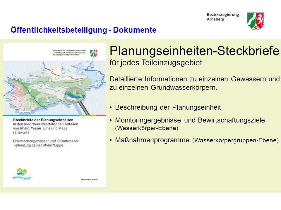 Öffentlichkeitsbeteiligung - Dokumente Beschreibung der Planungseinheit Monitoringergebnisse und Bewirtschaftungsziele (Wasserkörper-Ebene) Maßnahmenprogramme (Wasserkörpergruppen-Ebene) Planungseinheiten-Steckbriefe für jedes Teileinzugsgebiet Detaillierte Informationen zu einzelnen Gewässern und zu einzelnen Grundwasserkörpern.