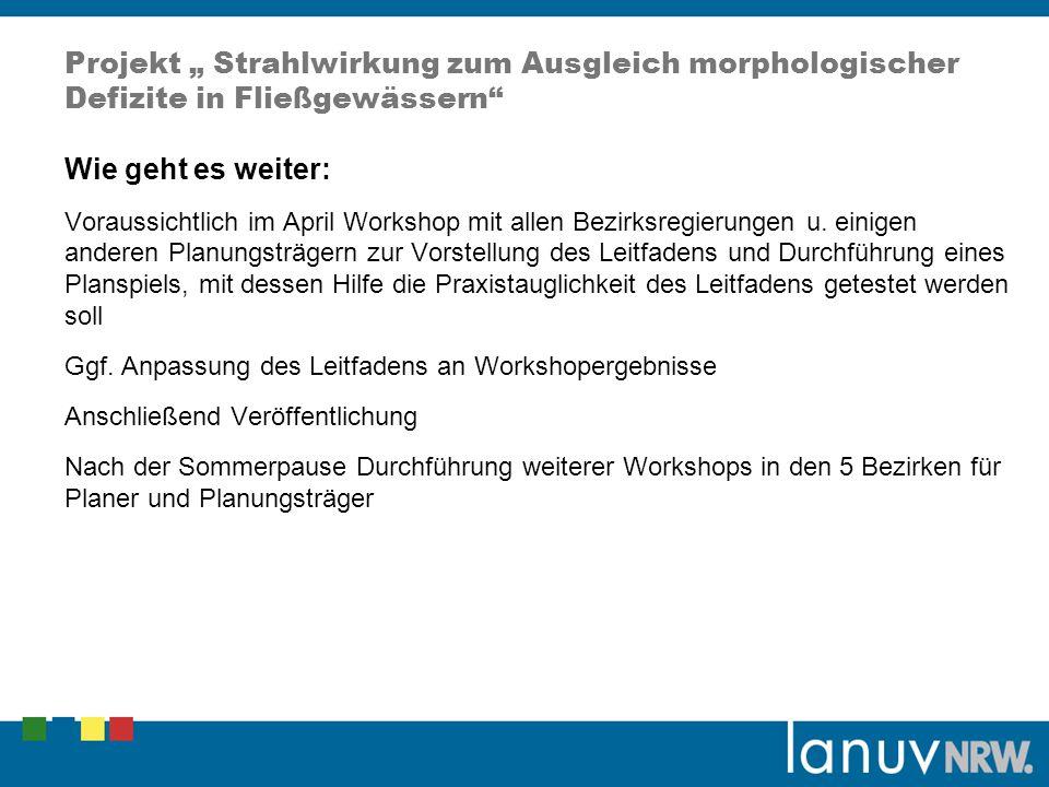 Projekt Strahlwirkung zum Ausgleich morphologischer Defizite in Fließgewässern Wie geht es weiter: Voraussichtlich im April Workshop mit allen Bezirks