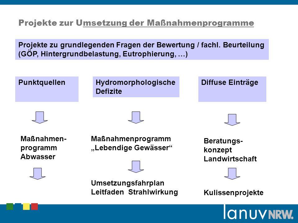Projekte zur Umsetzung der Maßnahmenprogramme Punktquellen Diffuse EinträgeHydromorphologische Defizite Maßnahmen- programm Abwasser Maßnahmenprogramm