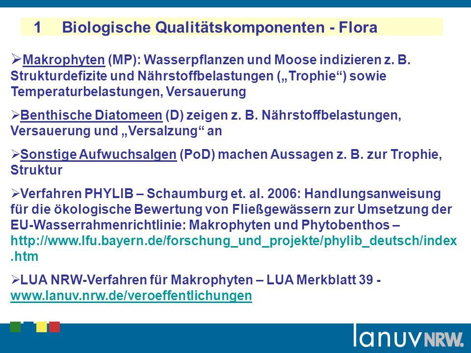 1 Biologische Qualitätskomponenten - Flora Makrophyten (MP): Wasserpflanzen und Moose indizieren z. B. Strukturdefizite und Nährstoffbelastungen (Trop