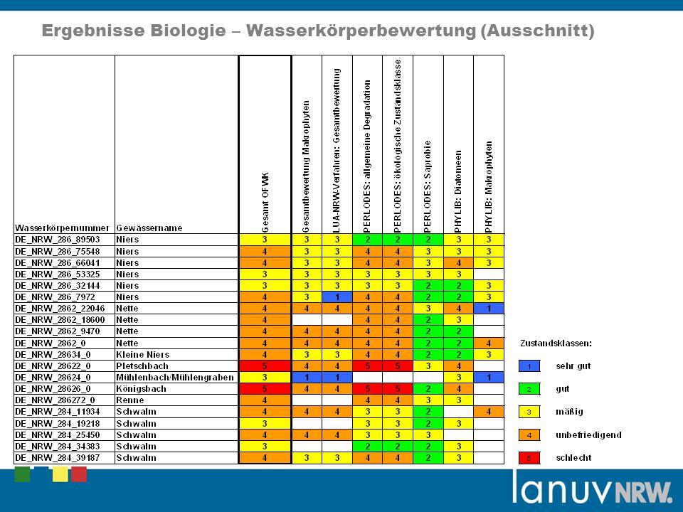 Ergebnisse Biologie – Wasserkörperbewertung (Ausschnitt)