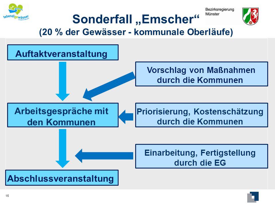 Sonderfall Emscher (20 % der Gewässer - kommunale Oberläufe) 15 Auftaktveranstaltung Arbeitsgespräche mit den Kommunen Abschlussveranstaltung Vorschla