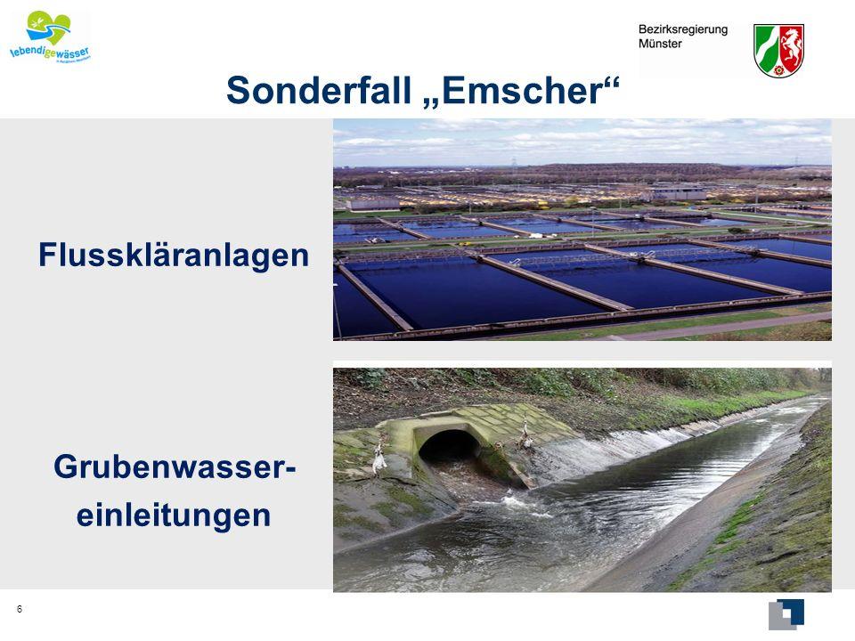 Sonderfall Emscher Hochwasserschutzdeiche Poldergebiete (13 Mio.