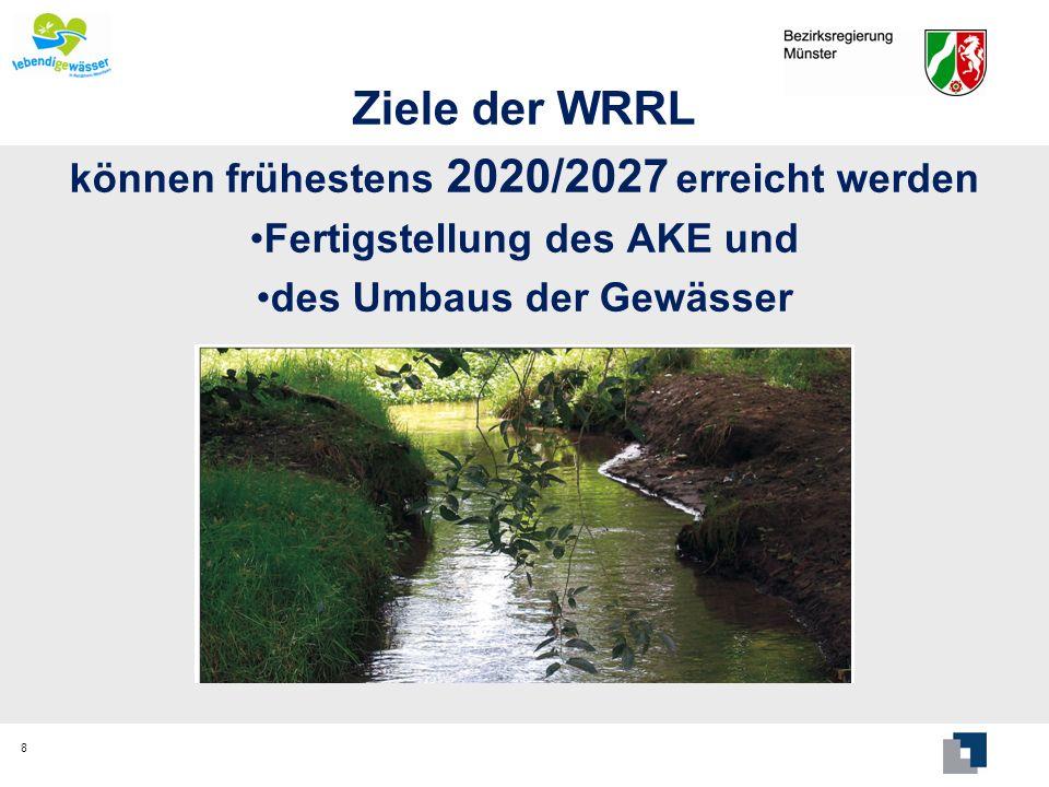 Ziele der WRRL können frühestens 2020/2027 erreicht werden Fertigstellung des AKE und des Umbaus der Gewässer 8