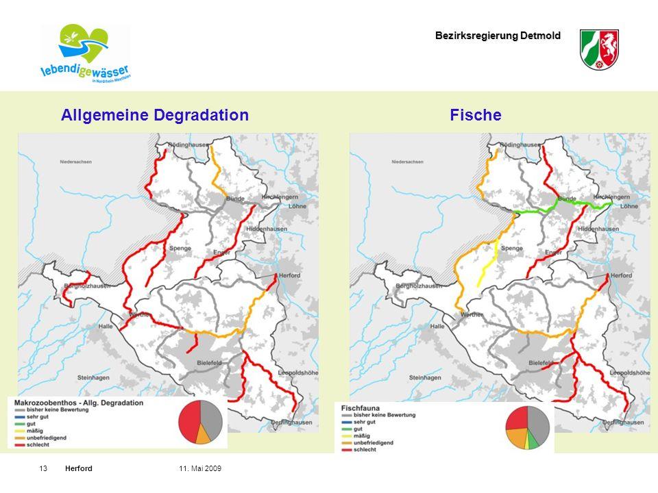 Bezirksregierung Detmold Herford1311. Mai 2009 Allgemeine DegradationFische