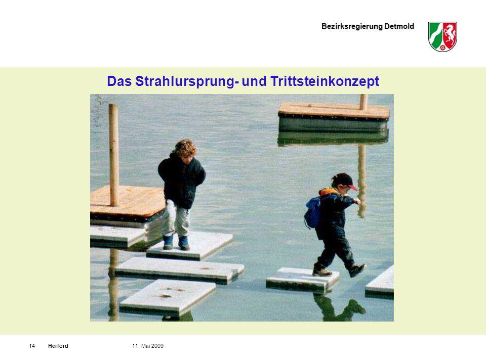 Bezirksregierung Detmold Herford1411. Mai 2009 Das Strahlursprung- und Trittsteinkonzept