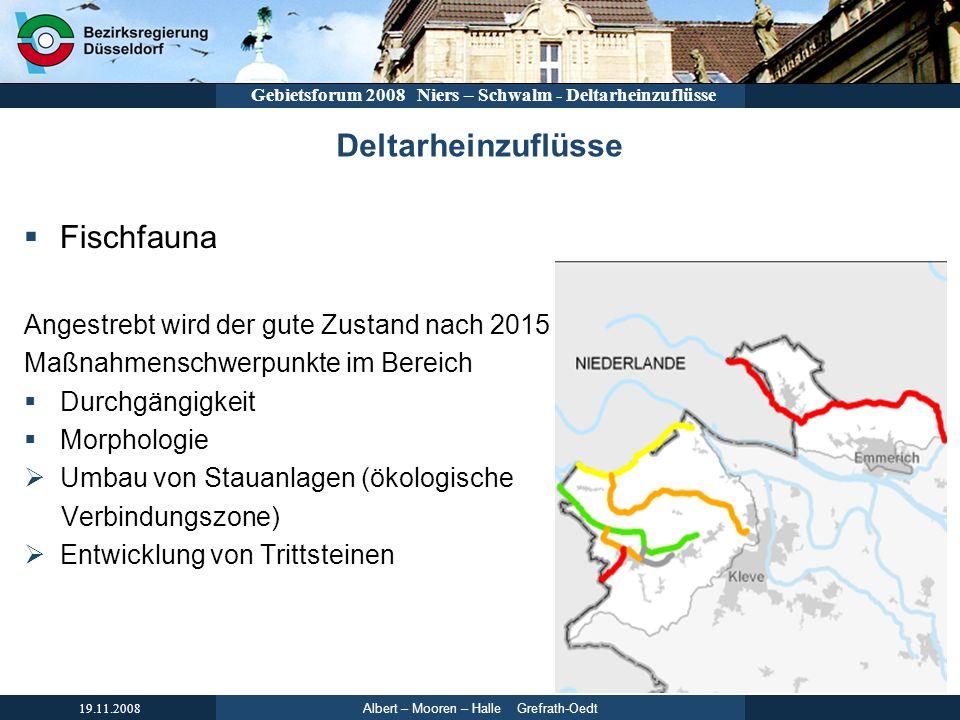 Albert – Mooren – Halle Grefrath-Oedt 19.11.2008 Gebietsforum 2008 Niers – Schwalm - Deltarheinzuflüsse Deltarheinzuflüsse Fischfauna Angestrebt wird